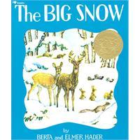 Big Snow 大雪